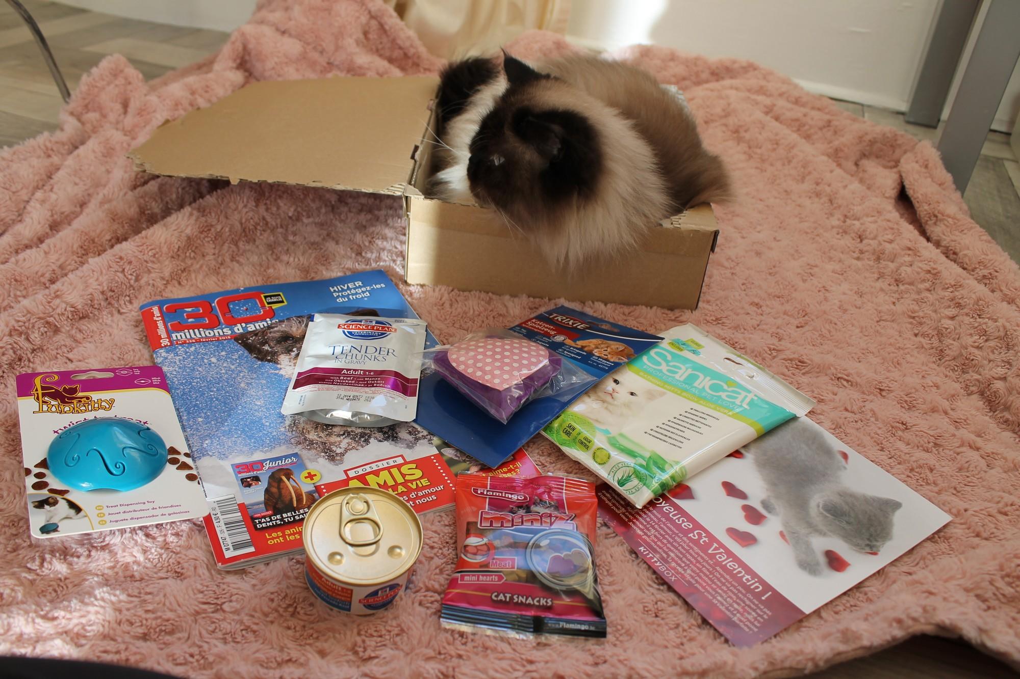 kittyboxfevrier10
