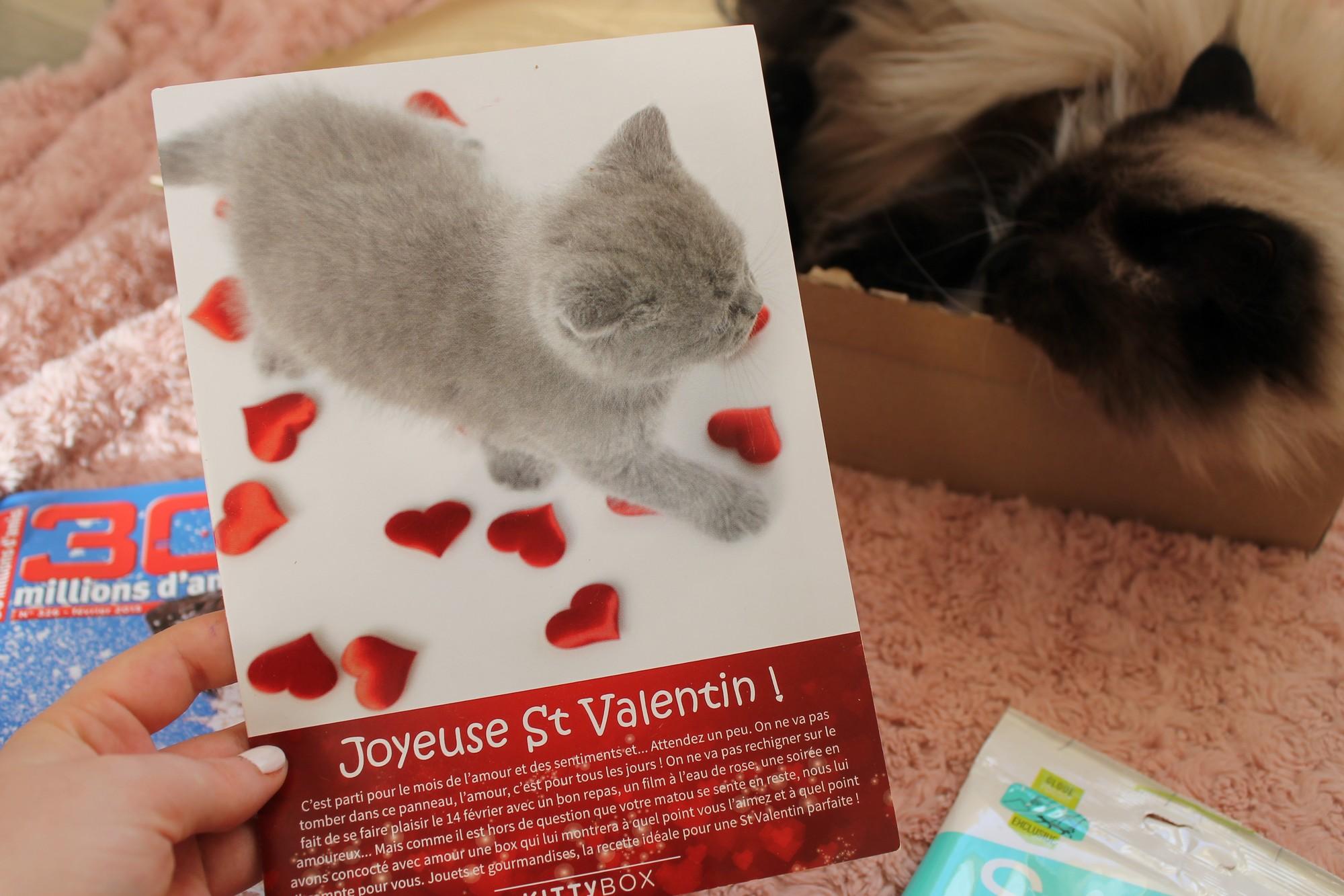 kittyboxfevrier4