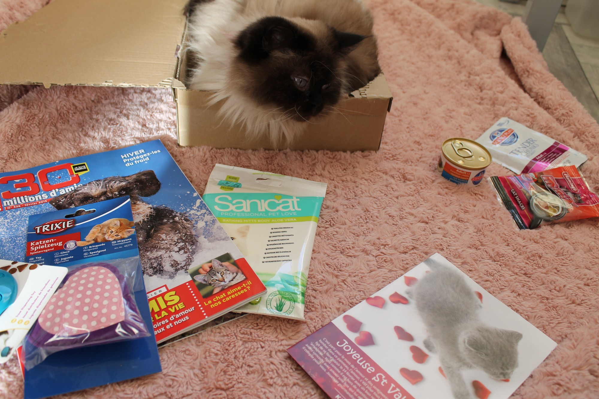 kittyboxfevrier9