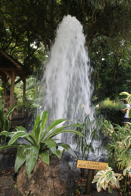 jardinbotanique10