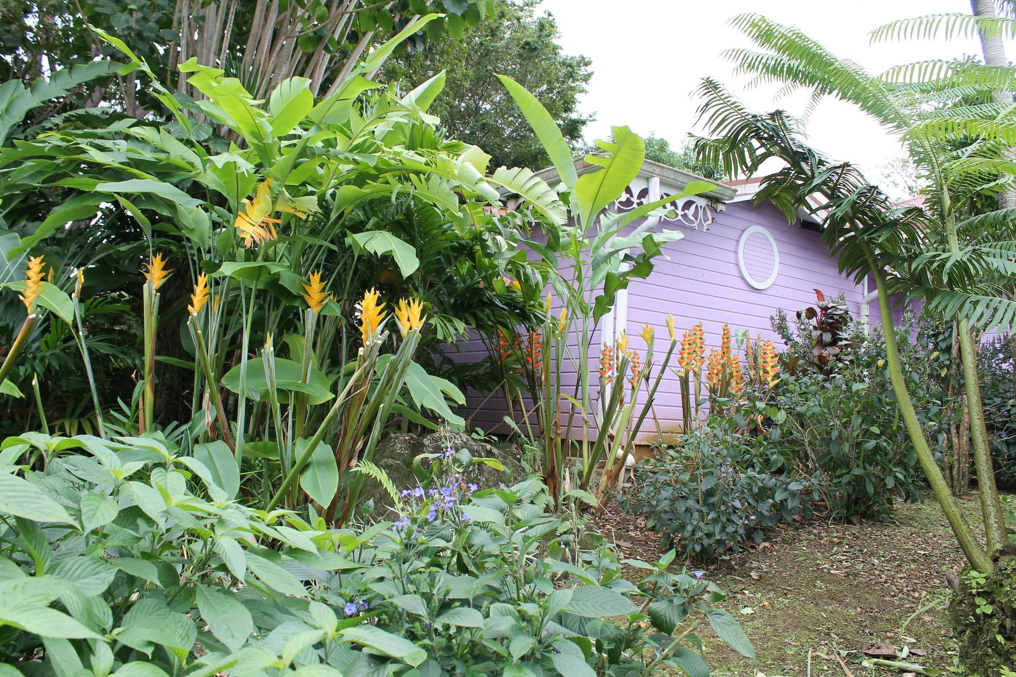jardinbotanique15