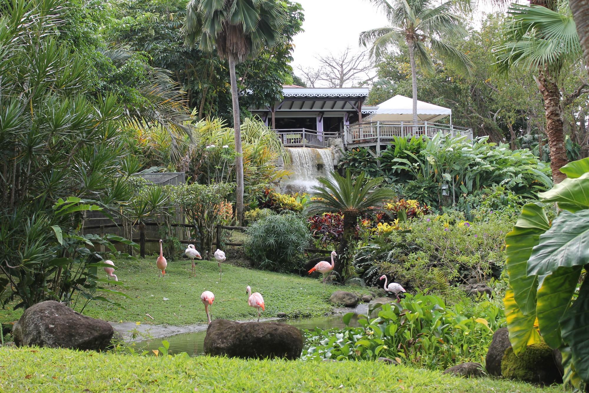 jardinbotanique18
