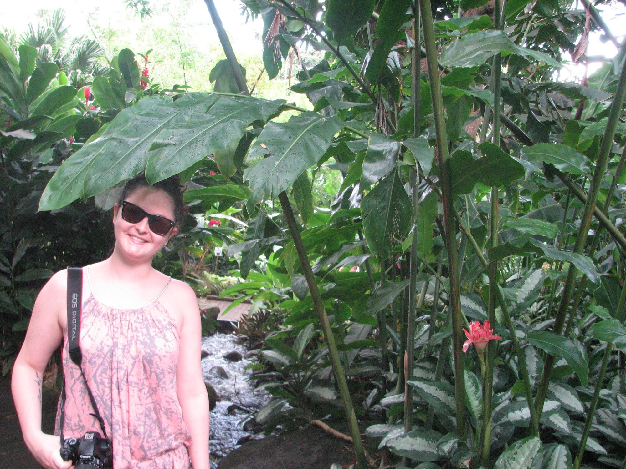 jardinbotanique222