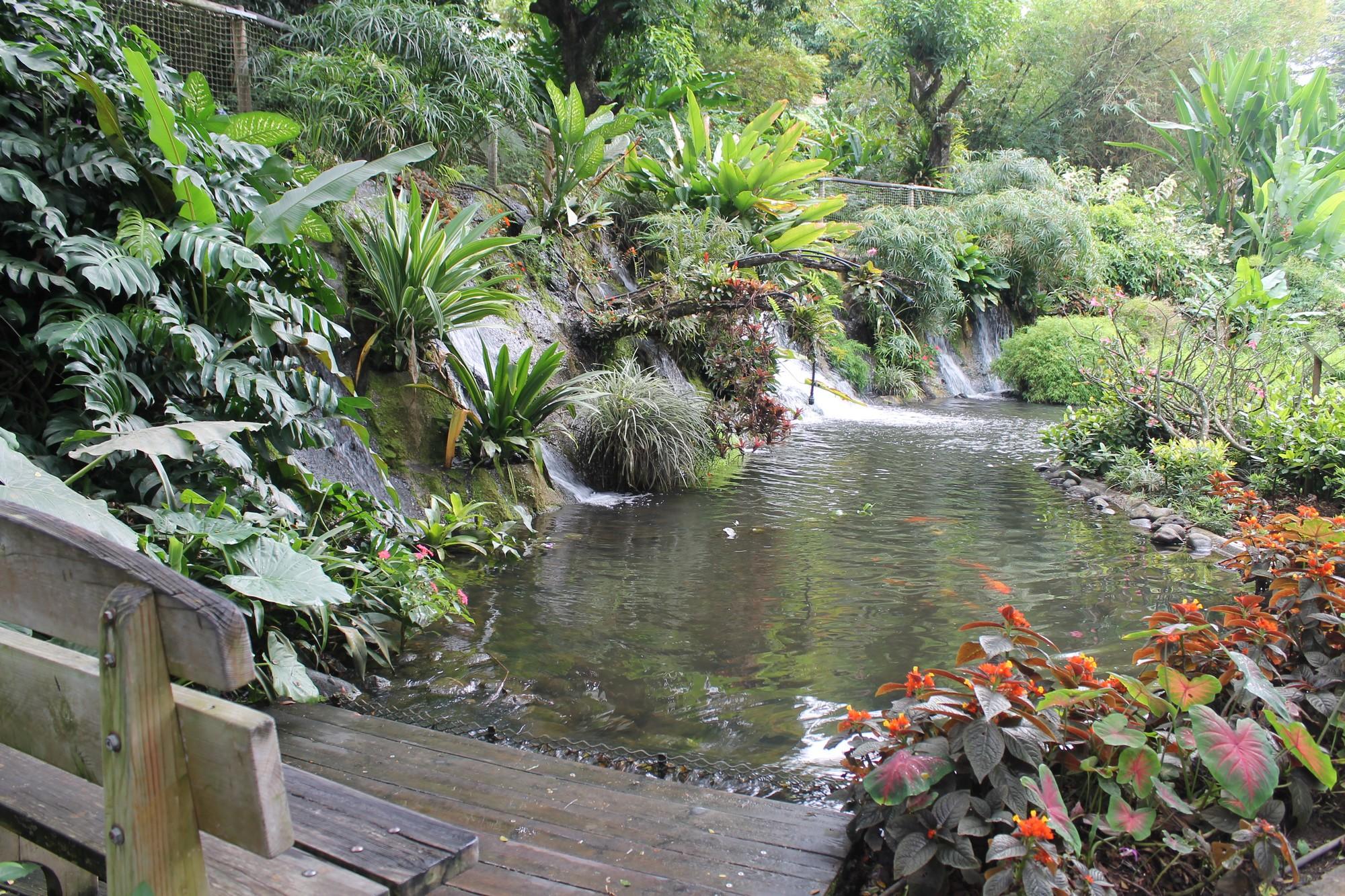 jardinbotanique24