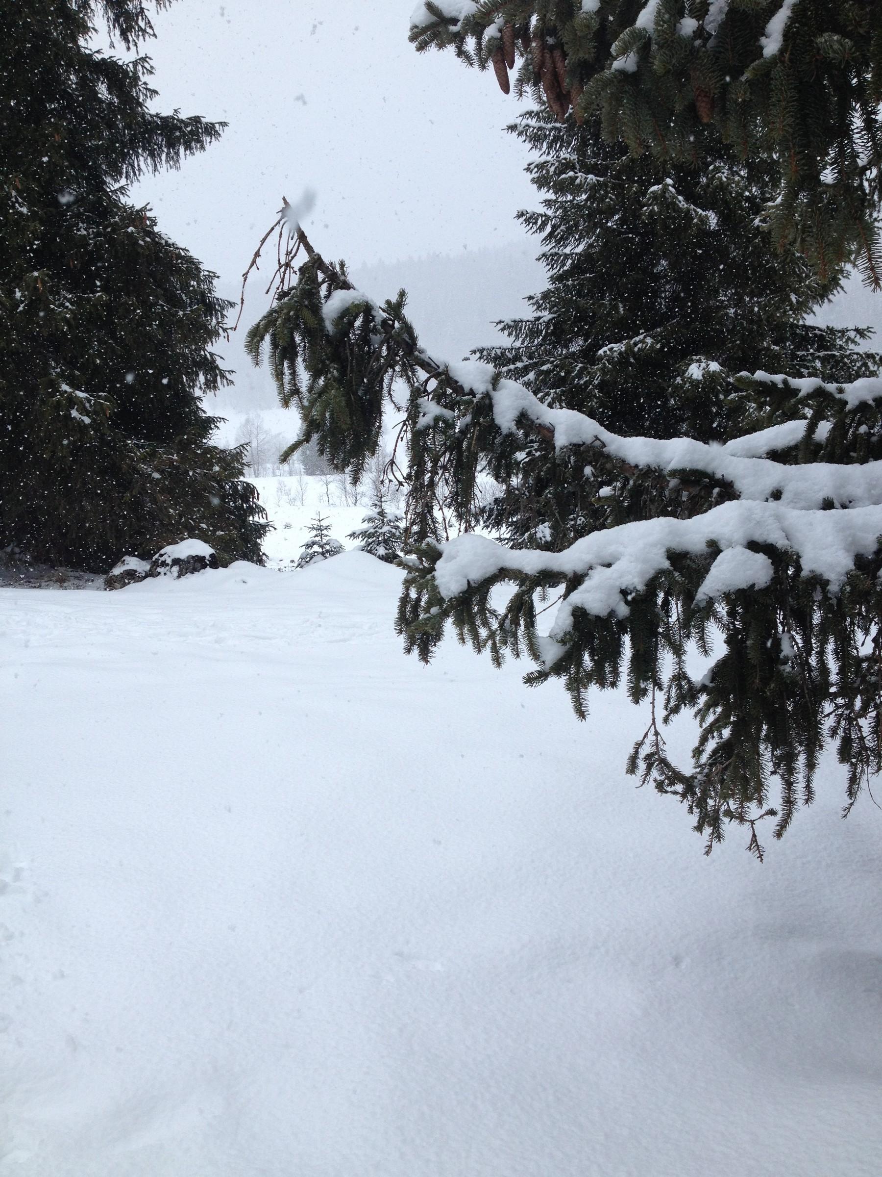 neige21