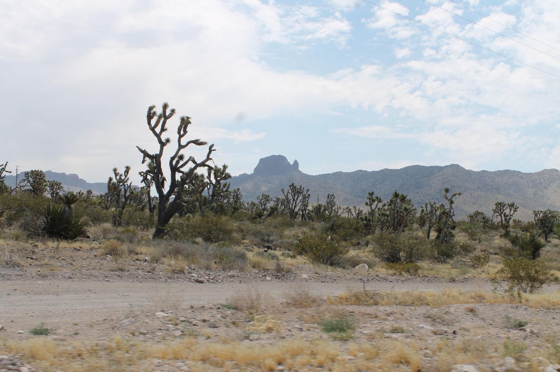 canyon20
