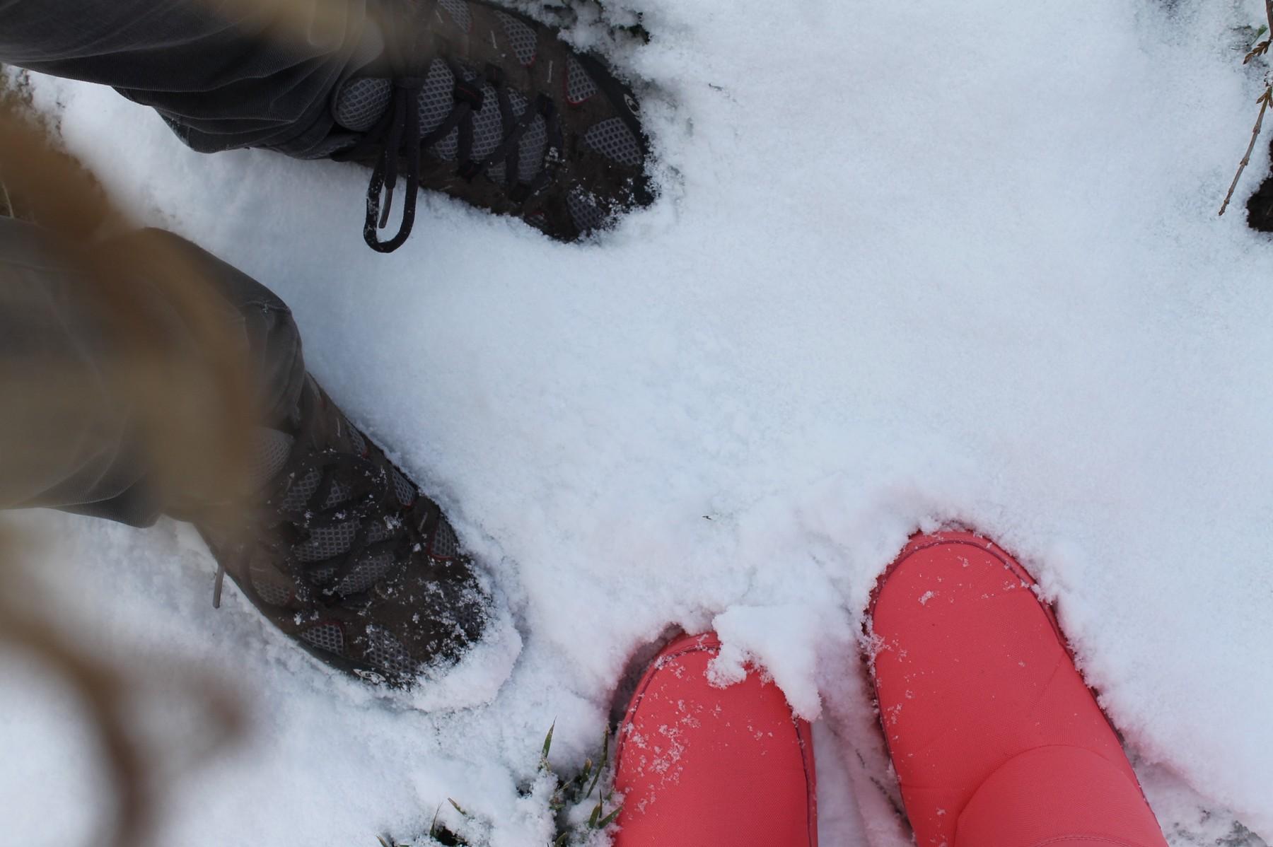 neige0