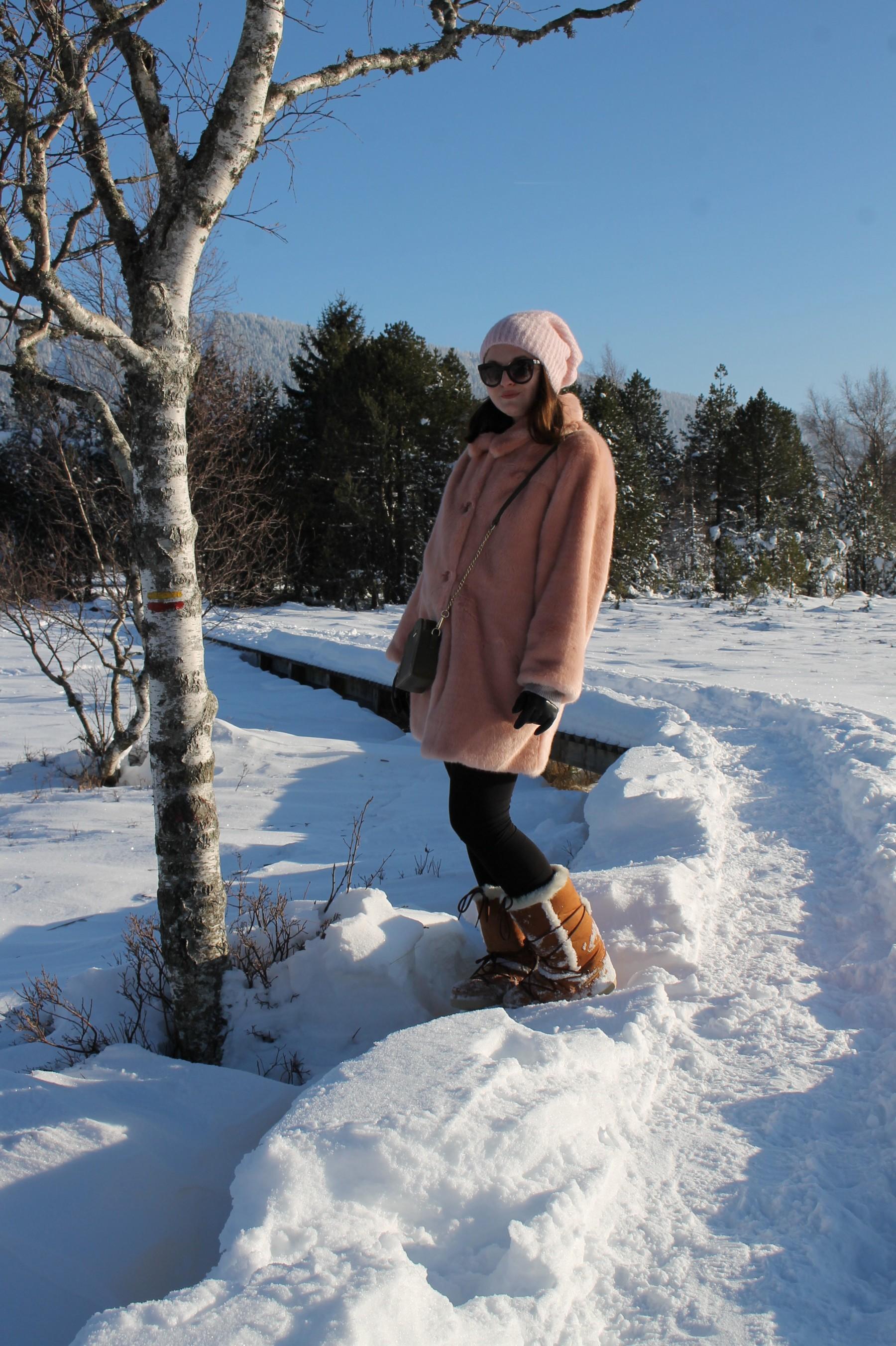 neige16