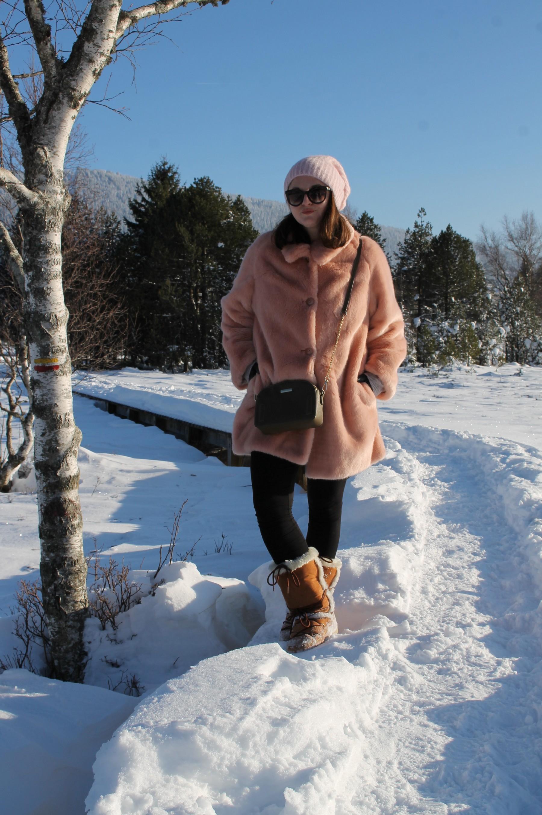 neige9