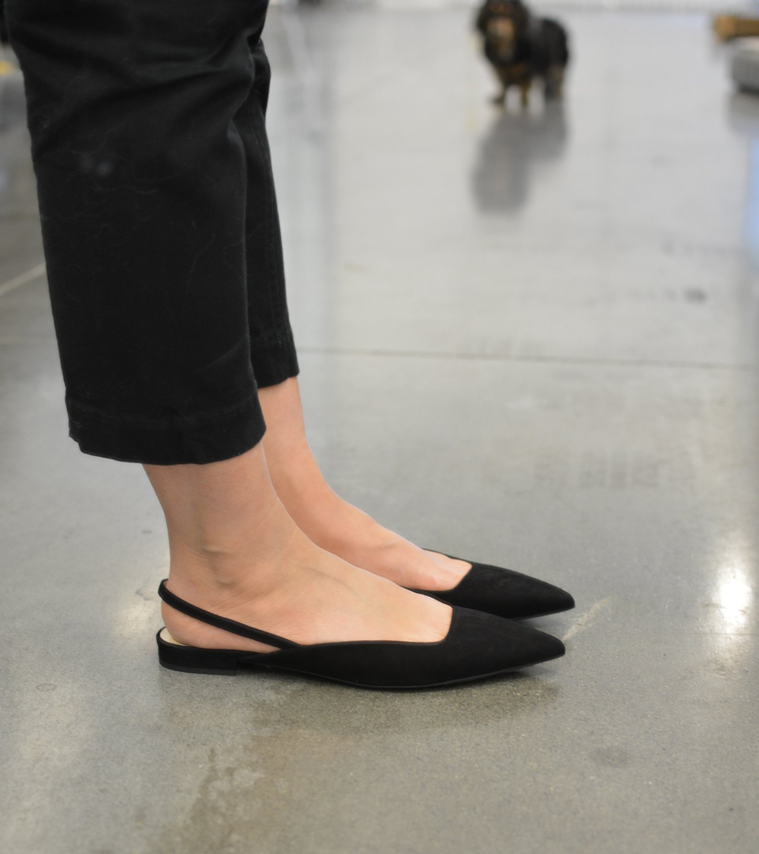 Everlane+Review+The+Editor+Slingback+shoe+(1+of+2)-min